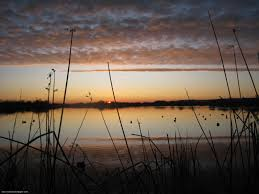 Outdoor hunting backgrounds Hunting And Fishing Duck Hunting Backgrounds Wallpaper 16001200 Hunting Wallpaper 48 Wallpapers Adorable Wallpapers Pinterest Duck Hunting Backgrounds Wallpaper 16001200 Hunting Wallpaper 48