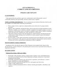 Bunch Ideas Of Resume Cover Letter Examples Promotion Ideas
