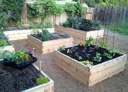starting a small garden starting a small garden