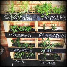 garden ideas vertical herb garden ideas diy wooden pallets balcony growing herbs is an easy way to get into gardening and there are l best indoor planter