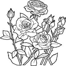 Small Picture Rose Flower in the Garden Coloring Page art Pinterest