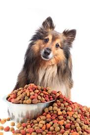 4health Dog Food Reviews