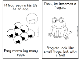 29 Frog Life Cycle Coloring Page, Frog Life Cycle Coloring Pages ...