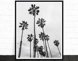palm tree print palm tree photo black and white photography tropical wall art california print palm tree art palm decor printable on wall art black and white trees with palm photography palm tree wall art black and white