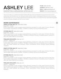 Gallery Of Resume Template Word Document Free Cv In 79 Excellent