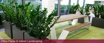 interior landscaping office. Fine Landscaping For Interior Landscaping Office