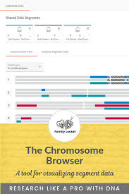 The Chromosome Browser A Tool For Visualizing Segment Data