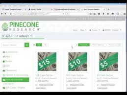 Image result for Pinecone Research