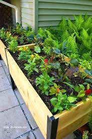 raised bed gardening containers best elevated garden beds ideas on raised garden beds above ground garden and building garden boxes raised bed container