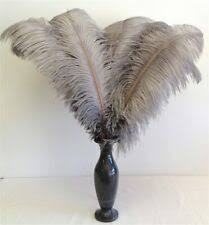 Ostrich Black Craft Feathers for sale   eBay