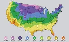 find your usda plant hardiness zone