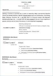 Resume Format In Ms Word Resume Example