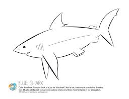 Small Picture 15 best Shark Education Activities images on Pinterest Sharks