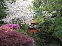 descanso gardens la cañada flintridge california japanese garden descanso gardens