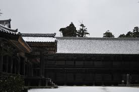 January 2011 旅するtimmybagus