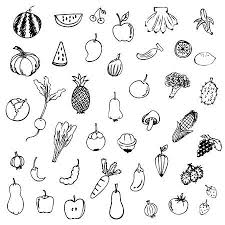 fruit and vegetables black and white. Fruits And Vegetables Sketch Vector In Black Doodle On White Background Stock 34471242 Fruit