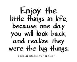 Enjoy Life Quotes Enjoying Life Quotes Gorgeous Enjoying Life Quotes Stunning Quotes About Enjoying Life