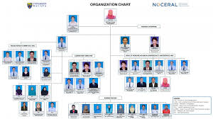 Um Chart Organization Chart Noceral
