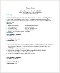 Bank Assistant Manager Resume 1 Others Pinterest