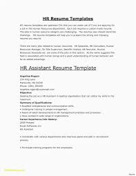 Free Theatre Resume Templates 29 New Marketing Email Template