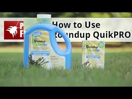 Roundup Pro Mixing Chart How To Use Roundup Quikpro Herbicide Youtube