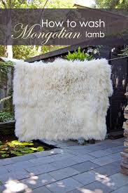 the day i washed my mongolian lambskin throw