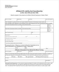 Free Affidavit Form Download Fascinating Sample Guardianship Affidavit Forms 48 Free Documents In PDF