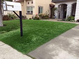 artificial lawn alma colorado backyard