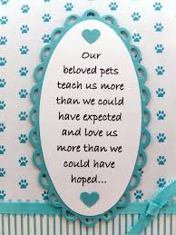 Card For Loss Of Pet Veterinary Sympathy Cards Condolences For Loss Of Cat Pet Sympathy