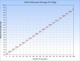 Guide To Metacam For Dogs Usage Dosage Side Effects