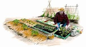 how to make instant garden beds
