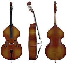 Cello Vs Double Bass Difference