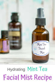 how to make your own hydrating mist diy hydrating travel spritz