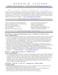 Sample Resume Sales And Marketing Classy Dennis R Caicedo Resumedh