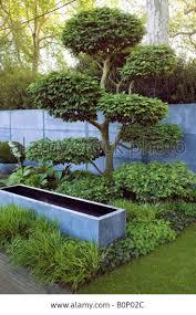 634 best Japanese Gardens images on Pinterest | Garden, Plants and  Beautiful gardens