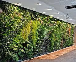 indoor wall garden unique green wall vertical garden best ideas about indoor wall garden indoor wall indoor wall garden