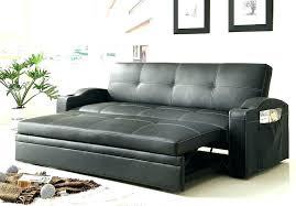 stylish sleeper sofa with storage