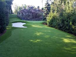fake grass indoor. Lawn Services DeBary, Florida Indoor Putting Greens, Commercial Landscape Fake Grass A