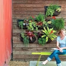 wall planters outdoor unique diy living wall planter ideas wall outdoor wall planters outdoor wall planters