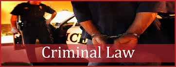essay on criminal law words