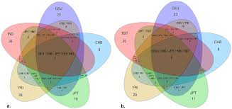 Venn Diagram Copy Venn Diagrams Representing The Number Of Overlapping Common Copy