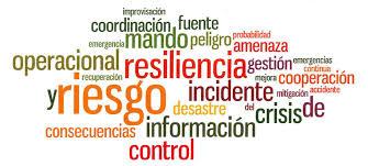 Resultat d'imatges de resiliencia