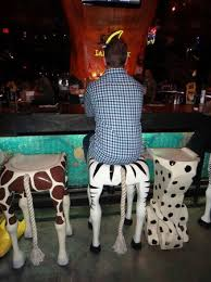 Rain Forest Cafe at MGM Grand Hotel and Casino: Fun bar stools