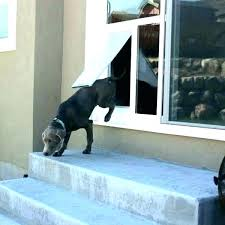 sliding glass door protector dog girl stuck in story guard