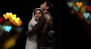Image result for viplav and dhaani