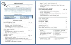 Best Professional Resume Template Resume Template Gray Professional ...