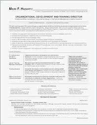 What To Put On Skills Section Of Resume Adorable Resumes For Property Managers Free Templates How To Put Skills A
