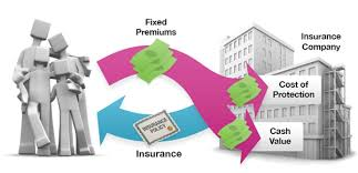 A Look At Whole Life Insurance Financial Directions