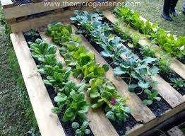 Small Picture 20 Creative Ways to Upcycle Pallets in your Garden The Micro