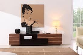 amazing contemporary furniture design. CADO Modern Furniture - TV015 TV Stand Amazing Contemporary Design
